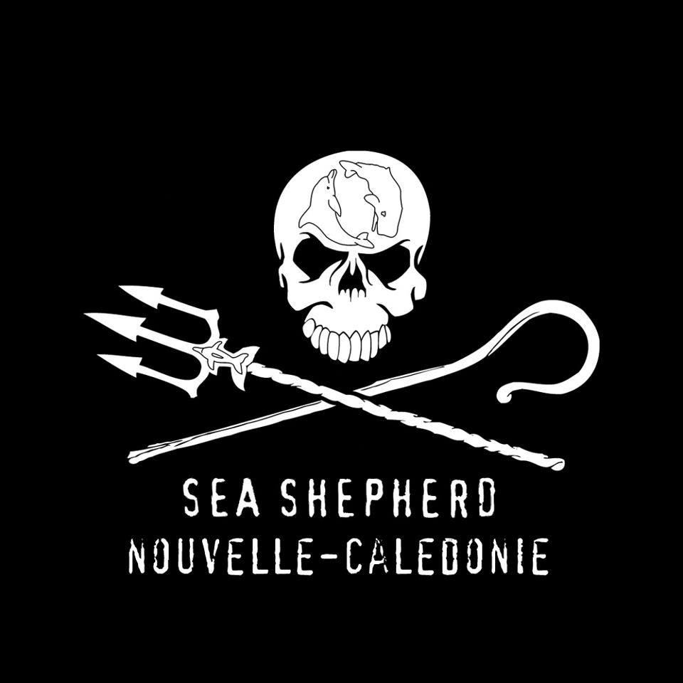 Sea Shepherd NC
